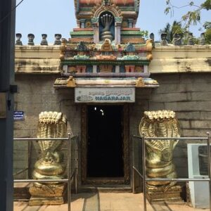 Nagaraja Temple Nagercoil - Timings, History, Dress Code, Images