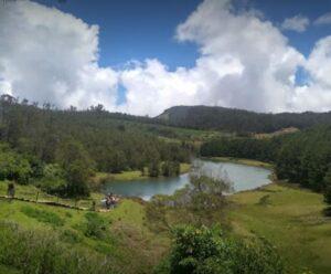 mudumalai reserve forest
